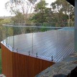 Balaustra di vetro e montaggi dell'acciaio inossidabile