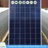 250W Poly-Crystalline Panel solar de silicio (BR-P250W)
