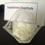 Koop de Onvolledige Oliën van Enanthate van het Testosteron van Steroïden voor de BulkGroei van Spieren