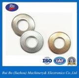 Plaqué zinc25511 de l'enf Dent côté unique de la rondelle en métal de la rondelle du ressort du disque