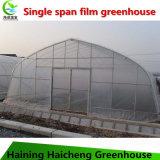Используемая овощем дом Пластмасс-Пленки зеленая для сбывания