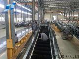 Toyon fuera de escaleras mecánicas en movimiento a pie 12 grados de 800mm de ancho pasos