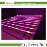Accesorio de iluminación LED Keisue crecer para el crecimiento de plantas hidropónicas