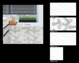 300X600mm Inkjet verglaasden de Binnenlandse Tegel van de Muur van het Bouwmateriaal van de Tegel Ceramische