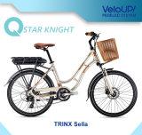 Veloupのスマートなドライブが付いている古典的なモデルヨーロッパ様式の安い女性の電気バイク