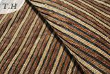 Bande et tissu ordinaire de meubles de Chenille (FTH31175)