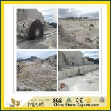 Het Houten Marmer van het kristal/de Grote Plak van Carrara/van Calacatta/van het Kwarts/van het Graniet/van de Travertijn/van het Kalksteen/van het Onyx/van het Zandsteen/van de Steen van de Lei voor Countertop/Vloer/Muur/Tegel/Grafsteen/Monument