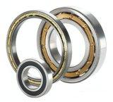 Fabrik-Lieferanten-Qualitäts-zylinderförmiges Rollenlager Nup330e