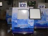 Напольный бункер льда с компрессором Aspera