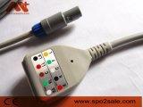 Cable creativo del tronco de ECG