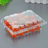 Cake/Cosmetic/Hardware/Toys를 위한 Customized 새로운 Clear Components Plastic PVC Folding Blister Packaging