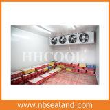 Gefrorenes Schweinefleisch-Kaltlagerung für Zwischenmitte