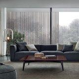 Sofá simples moderno do couro do lazer do estilo de Italy