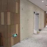 Resistente al impacto de la pared interior Revestimiento de pared decorativos fuera