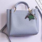 Sacchetto di cuoio dell'imbracatura della spalla della borsa delle donne dell'unità di elaborazione di buona qualità con gli accessori da vendere Sy8525
