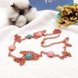 De kleurrijke Lange Halsband van de Steen voor Avondjurk voor Vrouwen