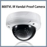 Surveillance 800TVL IR à prova de vandalismo Dome CCTV vídeo câmara de segurança (D21)
