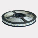 Striscia LED di alta qualità 12V SMD 5050