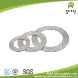 Ningbo (ASTM & DIN) Junta de metal corrugado