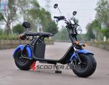 EUの市場のための大きいタイヤEECの電気スクーター2000W Citycoco