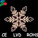 Indicatore luminoso di striscia flessibile esterno di 5m SMD 5050 RGB 60LEDs LED con la certificazione di RoHS del Ce