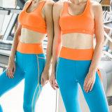 Les femmes de qualité supérieure Yoga portent des costumes Sexy costume de sport