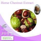 Порошок выдержки каштана лошади 100% естественный (Aescin 20%, 40%, 98% UV)