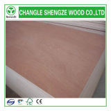 Dynea Highquality Poplar Plywood para Decoration/Furniture