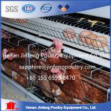 Cage galvanisée de poulet de batterie de fil pour la ferme avicole