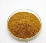 Estratto della nocciola di strega dei tannini 10% ~20% di Skincare con il certificato di iso