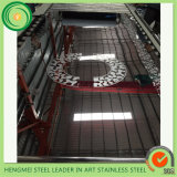 China-Lieferant AISI 304 ätzte Stainlesss Stahlblech für Höhenruder-Tür und Kabine