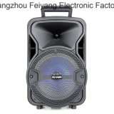 altoparlante di 8inch Bluetooth Chargeble