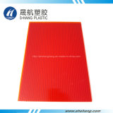 Strato della cavità del policarbonato glassato alta qualità con protezione UV