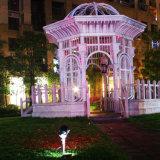 庭の裏庭の木のための無線遠隔コントローラとのRGBの星の動きレーザーのクリスマスの照明の屋外の照明