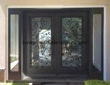 Populäre quadratische oberste einfacher Entwurfs-Eisen-Haustüren
