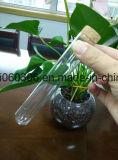 Tubo de charuto de vidro com cortiça