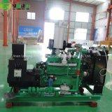 제조 공급 100-300kw 천연 가스 발전기 또는 자연적인 발전기