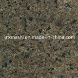 PolierNatural Forest Green Marble für Tile, Slab, Countertop, Backplash