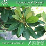 Выдержка листьев Loquat 100% естественная (кислота 25%-95% Ursolic)