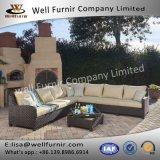 Insieme modulare buono della disposizione dei posti a sedere di Furnir Wf-17097 6-Piece