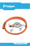 Régulateur de basse pression avec le tuyau de la CE - 19 (S100)