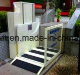 300 кг дома, Вилла подъема подъемника, вертикальный подъем, Paltform подъемника поднимите инвалидов