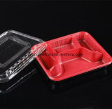 Calidad Alimentaria Pet desechables de plástico polipropileno PVC Takeout Bento Box Lunch