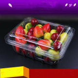 Freie NahrungDelviery Plastikkasten Belüftung-pp. verpackenmaschinenhälften-Kasten