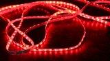 Wasserdichte SMD5050 LED Seil-Lichter RGB-für Markt-/Hotel-Dekoration/hellen Kasten