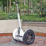 [كست-فّكتيف] اثنان عجلة كهربائيّة درّاجة ناريّة [سكوتر]