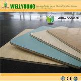 Декоративное изготовление панели ламината HPL компакта