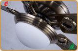 L'utilisation estivale de la série d'or noir du ventilateur de plafond décoratif avec la Lumière de Contrôle ventilateur de chauffage de l'Interrupteur gradateur de lumière Ventilateur de plafond Lampes à LED