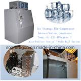 Escaninho do gelo/escaninho armazenamento do gelo