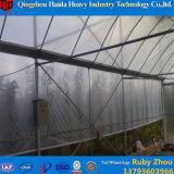 トマトのきゅうり/Invernaderoのための低価格の温室のベンチ